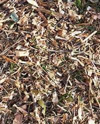 Forest Mulch Fresh