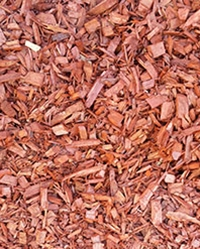 Red Decorative Mulch